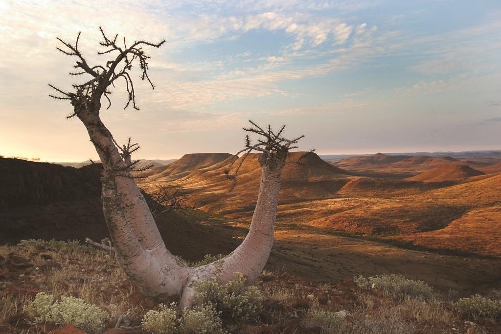 Entdeckungsreise Namibia