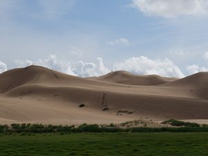 Mongolei Gobi