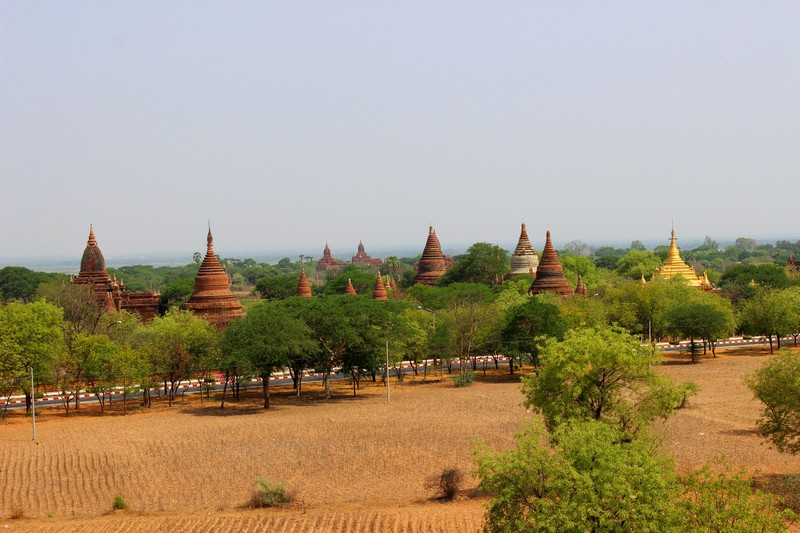 Bagan_Pagodenfeld-2