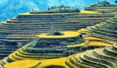 Landleben in China
