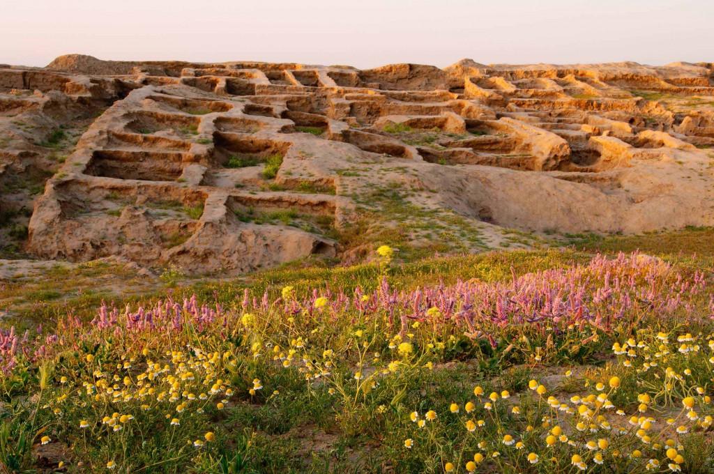 archaeologische_reise_usbekistan (4)
