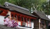 Japan Rundreise 9 Tage