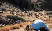 Kirgistan: Trekking im Gebirge des Terskei Ala Too
