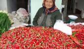 Farben Kirgistans 8-tägige Rundreise