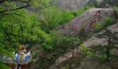 Nordkorea: Sehenswürdigkeiten in Kaesong, Heimat des Gingseng.