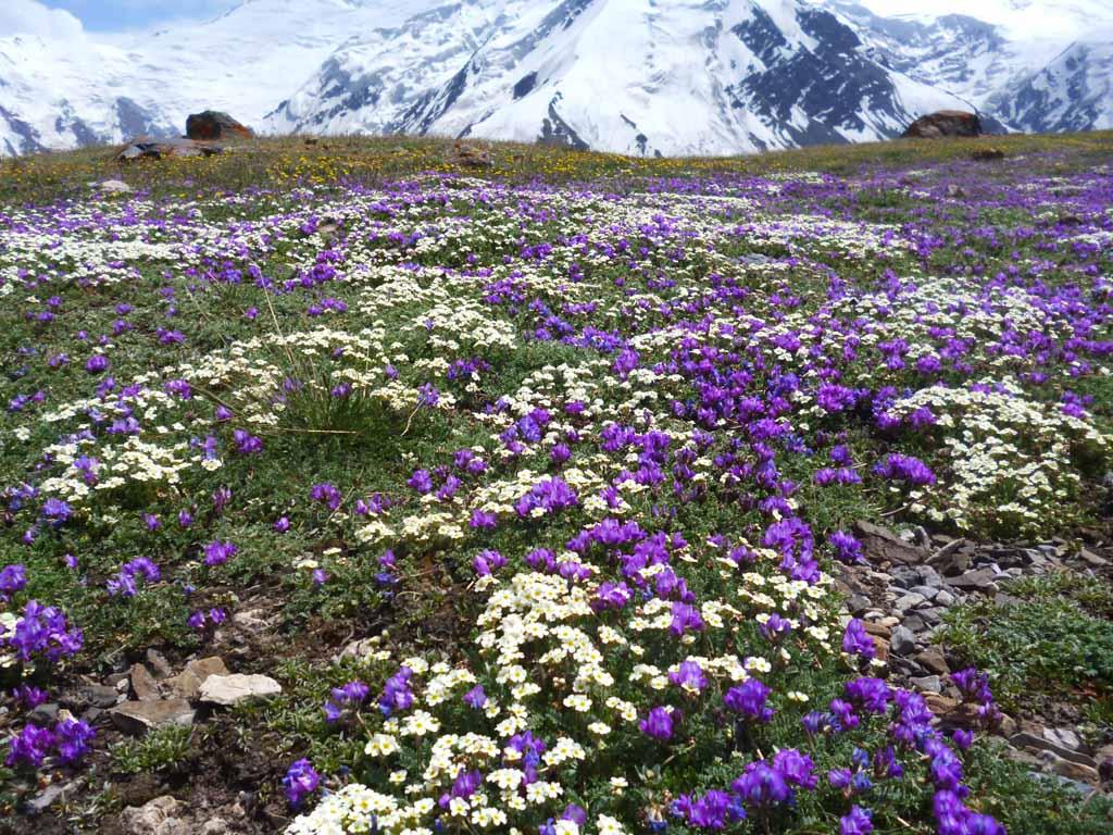 Kirgistan Pamir Gebirge