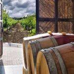 Moldawien Weintour