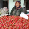 kirgisien (24)