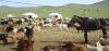 mongolei-reise-rundreise-21-tage