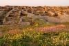 archaeologische_reise_usbekistan (4).jpg